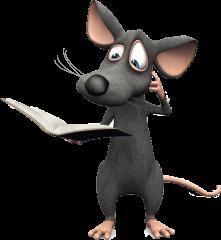 Miasto myszy Kołobrzeg